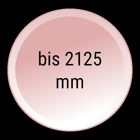 Sektionaltor mit 5000 mm Breite und 2125 mm Höhe