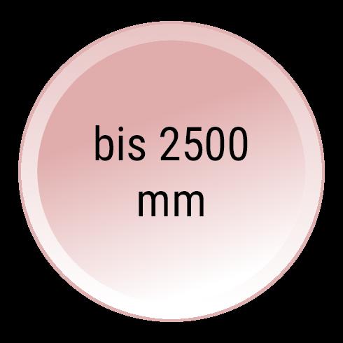Schwingtor mit 6000 mm Breite und 2500 mm Höhe
